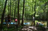 Cypress Swamp Kayak Adventure