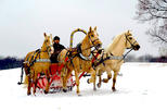 2-Hour Horse Sledge Tour from Riga