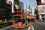 New York Hop-on Hop-off Tour including Statue of Liberty and Ellis Island Ferry Ticket