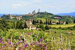 Small-Group Tuscany Wine Country Day Trip from Rome Including Wine Tasting