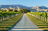 Full-Day Marlborough Wine Tour Including Wine Tasting