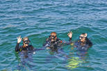 Discover Scuba Diving in Albufeira