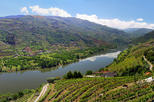 Full day tour douro valley trip from porto in porto 284282