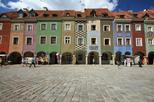 Private walking tour in Poznan