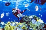 Resort Diving Course in Nassau