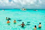 Cayman Islands Breakfast and Snorkel Cruise to Stingray City, Cayman Islands, Day Cruises