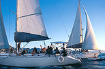 Day Sailing on Banderas Bay, Puerto Vallarta, Sailing Trips