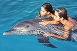 Nuevo Vallarta Dolphin Encounter, Puerto Vallarta, Swim with Dolphins