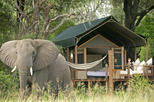 Couples 4-Day NON-SHARED Lux Private Safari Tour of Kruger Park from Johanesburg
