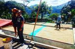 guatape and coffee express tour medellin