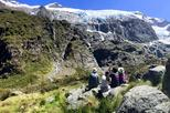Wanaka Rob Roy Glacier Hike from Queenstown