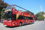 Hop-on-Hop-off-Tour durch Istanbul