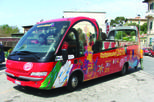 Livorno Shore Excursion: Livorno City Hop-on Hop-off Tour, Florence,