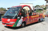 Livorno Shore Excursion: Livorno City Hop-on Hop-off Tour, Florence, Ports of Call Tours