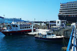 Mykonos Shore Excursion: 5-Hour Delos Island Day trip from Mykonos
