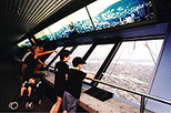 Montreal Tower Observatory Admission plus Optional Olympic Park or Biodome Tour, Montreal, ...