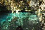 Caribbean Sea and Cenote Snorkeling Adventure from Tulum