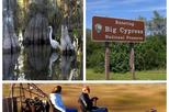 5 hour Private Everglades Tour with Miccosukee Airboat and Big Cypress National Preserve