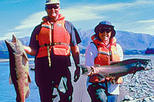 Half Day Fishing Tour from Christchurch