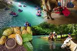 BLUE RIVER COMBO: WHITE WATER TUBING-HORSE BACK RIDING & MILKING-CHOCOLATE TOUR