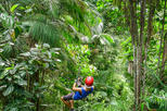 Private Mindo Zip Lining, Chocolate Tasting and Equator Museum Tour