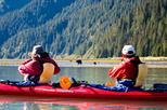 Half-Day Tonsina Creek Kayaking Adventure from Seward