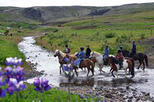 Viking Horse-Riding and Gulfoss and Geysir Express Tour from Reykjavik
