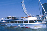 London Eye: River Cruise Experience, London, Attraction Tickets