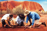 Kuniya Sunset Aboriginal Tour including Uluru Cultural Center