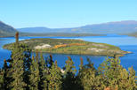 Half-Day Guided Yukon Sightseeing Shore Excursion from Skagway