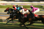 Melbourne Spring Racing Carnival - Race Day Cruising Package, Melbourne, Sporting Events & Packages