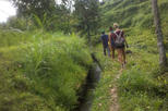 Countryside Trekking