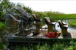 1-Hour Private Air Boat Tour of the Everglades