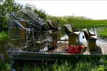 2-Hour Private Air Boat Tour of the Everglades