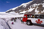 Columbia Icefield Tour from Jasper, Alberta,