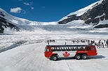 Columbia Icefield Tour including the Glacier Skywalk from Calgary