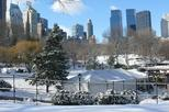 Christmas in New York - Private Walking Tour with Local Guide