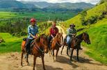 Horseback riding and Cooking class