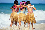 Hawaii Big Island Airport Arrival Transfer with Optional Lei Greeting