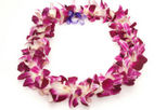 Oahu Lei Greeting, Oahu, Airport Services
