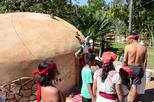 Baby Turtle Release Aztec Religious Mysticism Temazcal Experience and Jungle Coyuca Lagoon Tour