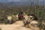 U-Drive ATV Tour in the Sonoran Desert, Phoenix,