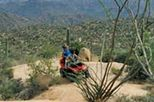 U-Drive ATV Tour in the Sonoran Desert