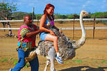 Ostrich Farm and HATO Caves Combo Adventure, Curacao, Nature & Wildlife