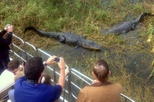 Florida Everglades Airboat Tour with Transport