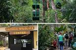 Ecological Exhibitions in Gamboa