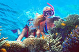 2-Day Best of Cairns and the Great Barrier Reef, Cairns & the Tropical North, Day Trips