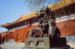 Beijing Day Tour: Hutong, Lama Temple, and Panda Zoo