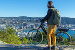 Full-Day Self-Guided Electric Bike Tour of Wellington