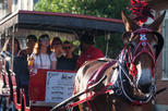 French Quarter Horse and Carriage with St. Louis Cemetery Tour